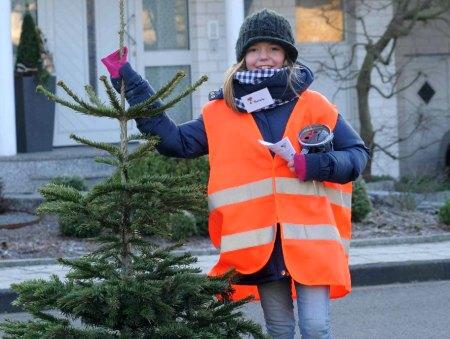 Aktion Nadelnder Tannenbaum 2013